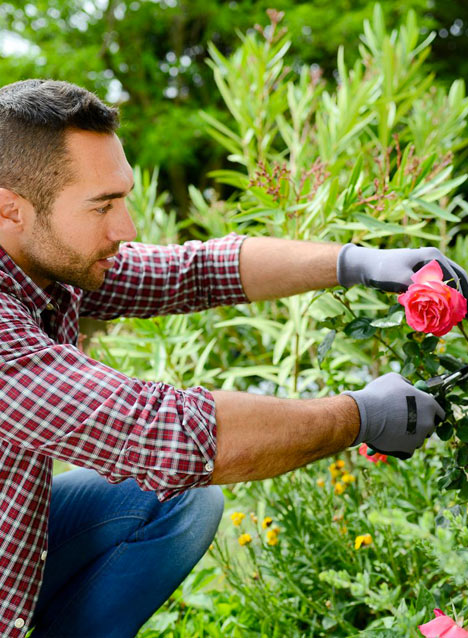 Votre jardinier paysagiste conçoit et aménage votre espace vert à Blanquefort